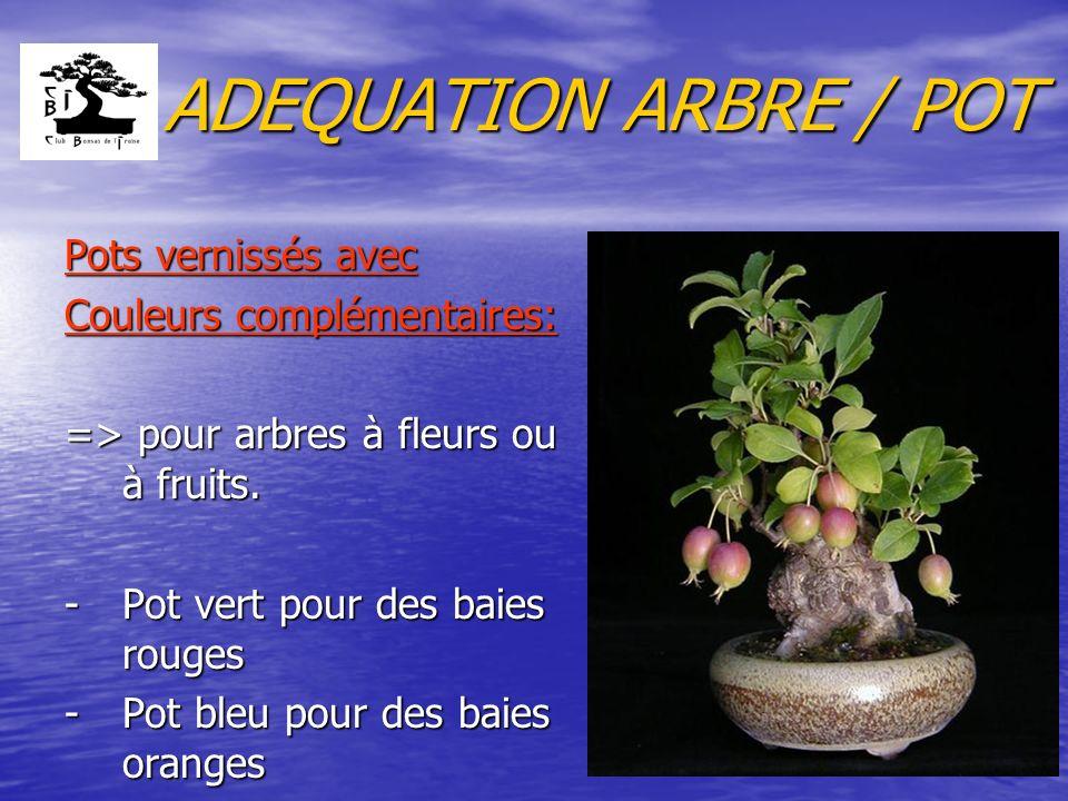 ADEQUATION ARBRE / POT Pots vernissés avec Couleurs complémentaires: