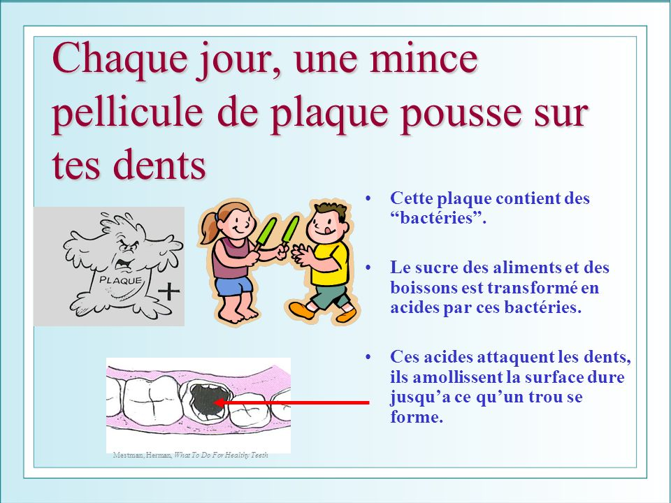 Chaque jour, une mince pellicule de plaque pousse sur tes dents