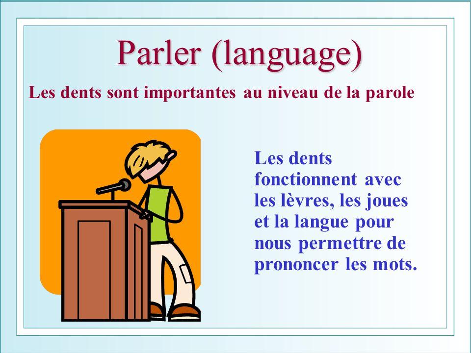 Parler (language) Les dents sont importantes au niveau de la parole.