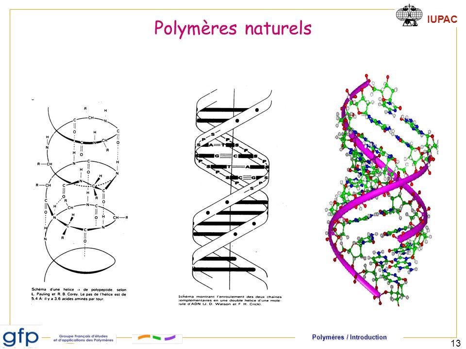 Polymères naturels