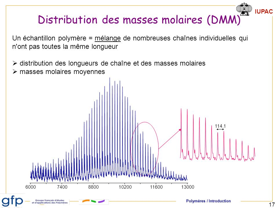 Distribution des masses molaires (DMM)