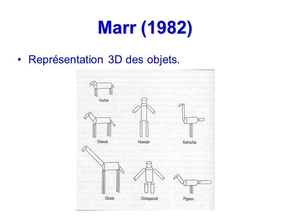 Marr (1982) Représentation 3D des objets.