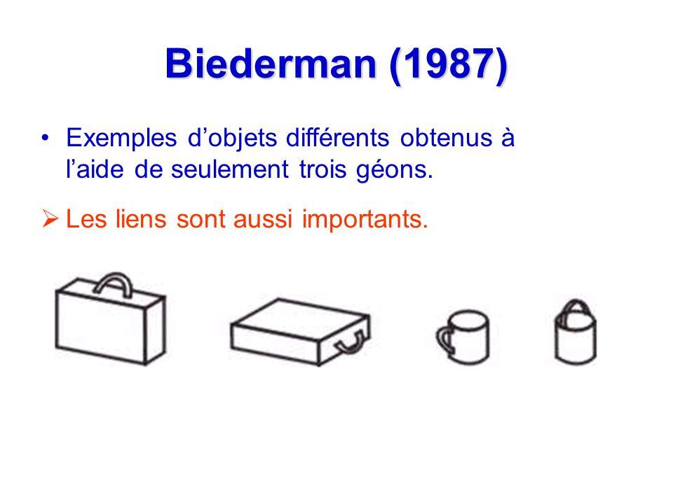 Biederman (1987) Exemples d'objets différents obtenus à l'aide de seulement trois géons.