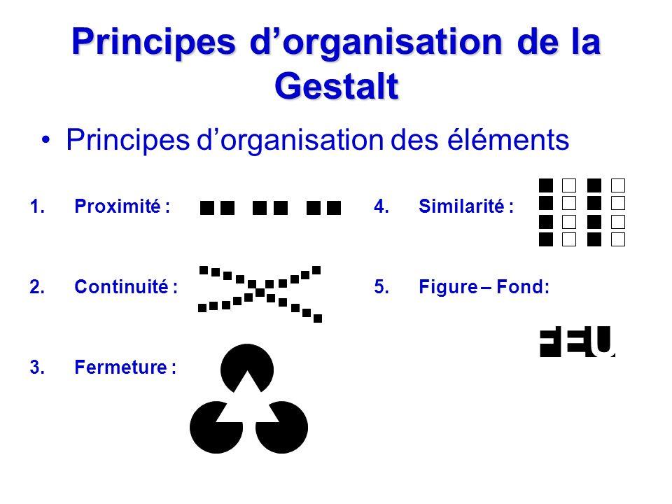 Principes d'organisation de la Gestalt
