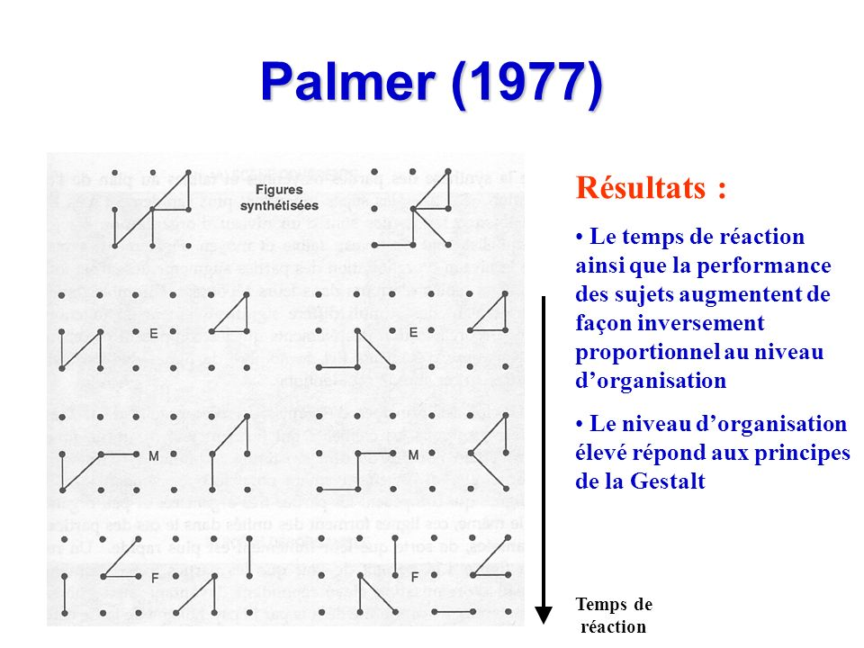 Palmer (1977) Résultats :