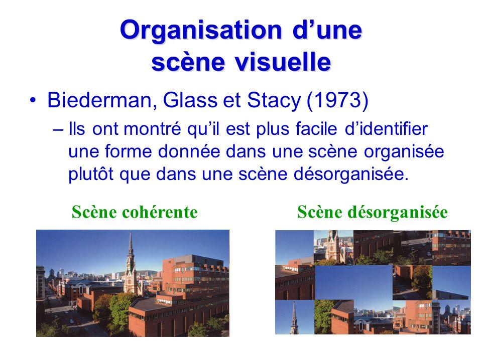 Organisation d'une scène visuelle