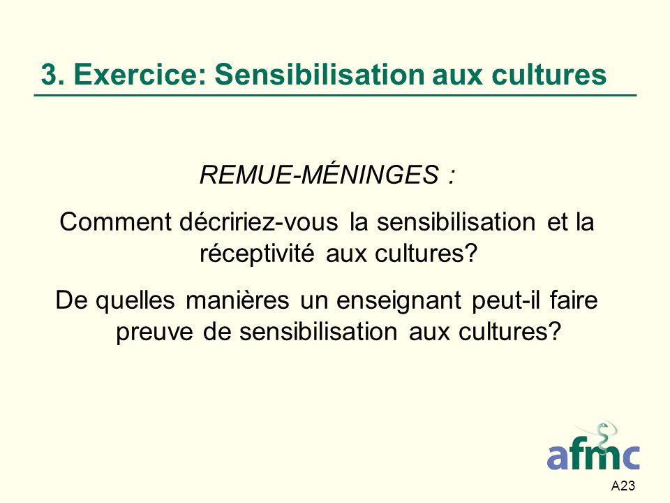 3. Exercice: Sensibilisation aux cultures