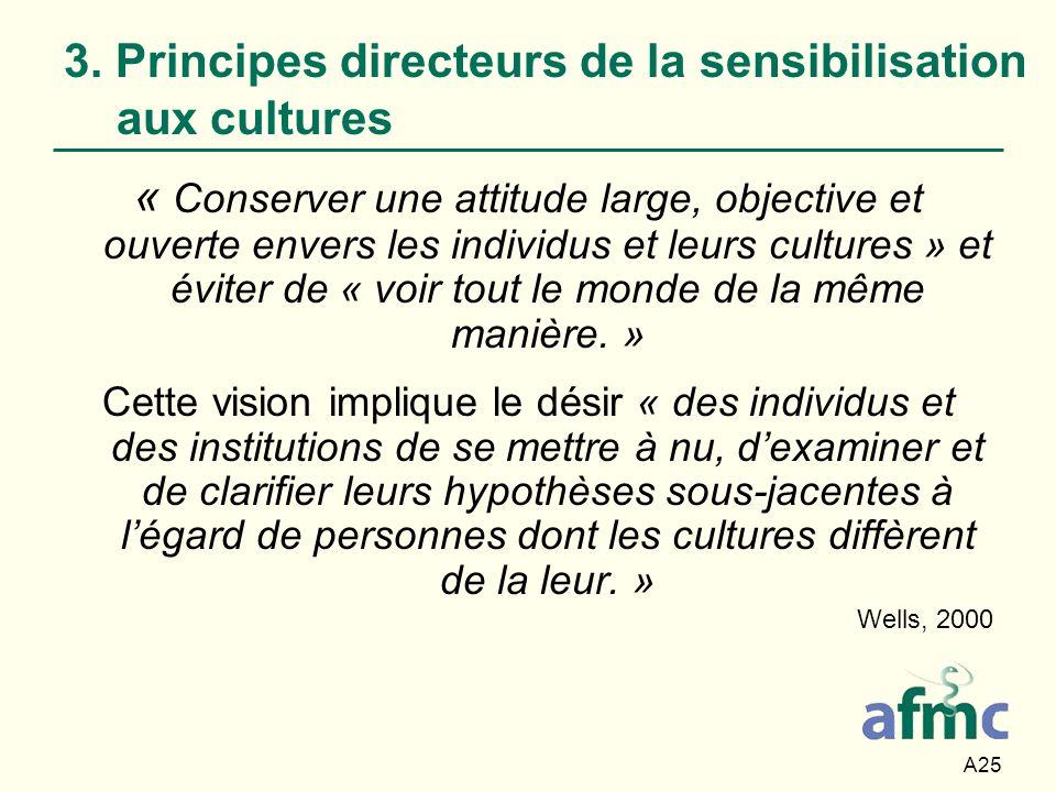 3. Principes directeurs de la sensibilisation aux cultures
