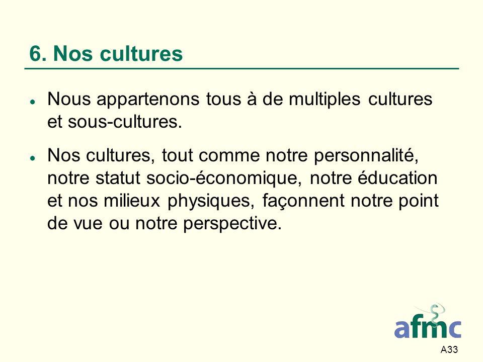 6. Nos cultures Nous appartenons tous à de multiples cultures et sous-cultures.
