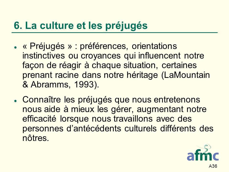 6. La culture et les préjugés