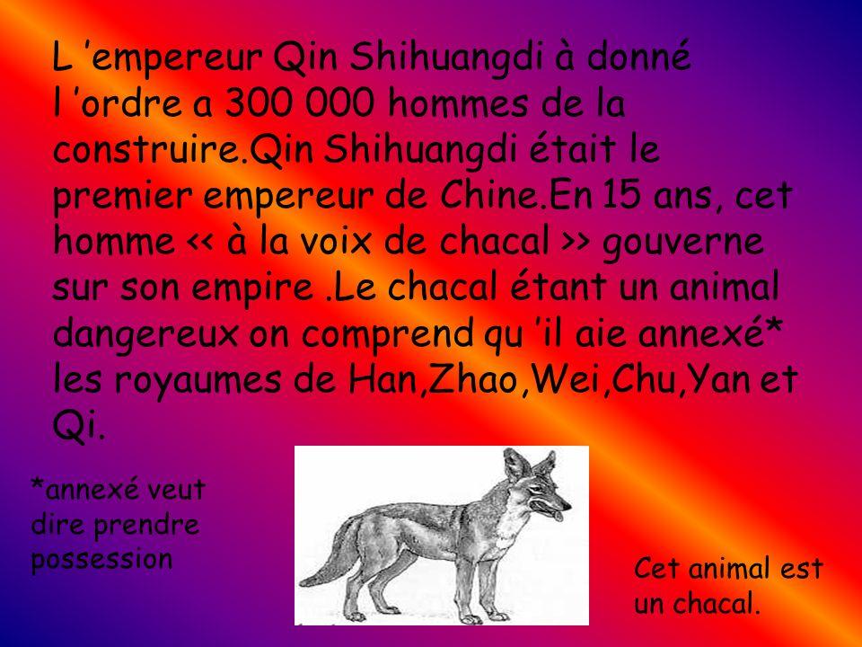 L 'empereur Qin Shihuangdi à donné l 'ordre a 300 000 hommes de la construire.Qin Shihuangdi était le premier empereur de Chine.En 15 ans, cet homme << à la voix de chacal >> gouverne sur son empire .Le chacal étant un animal dangereux on comprend qu 'il aie annexé* les royaumes de Han,Zhao,Wei,Chu,Yan et Qi.