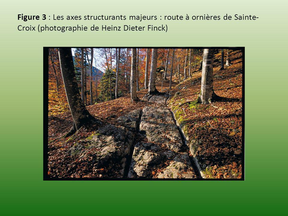 Figure 3 : Les axes structurants majeurs : route à ornières de Sainte-Croix (photographie de Heinz Dieter Finck)