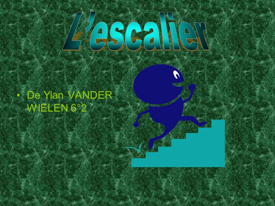 L'escalier De Ylan VANDER WIELEN 6°2