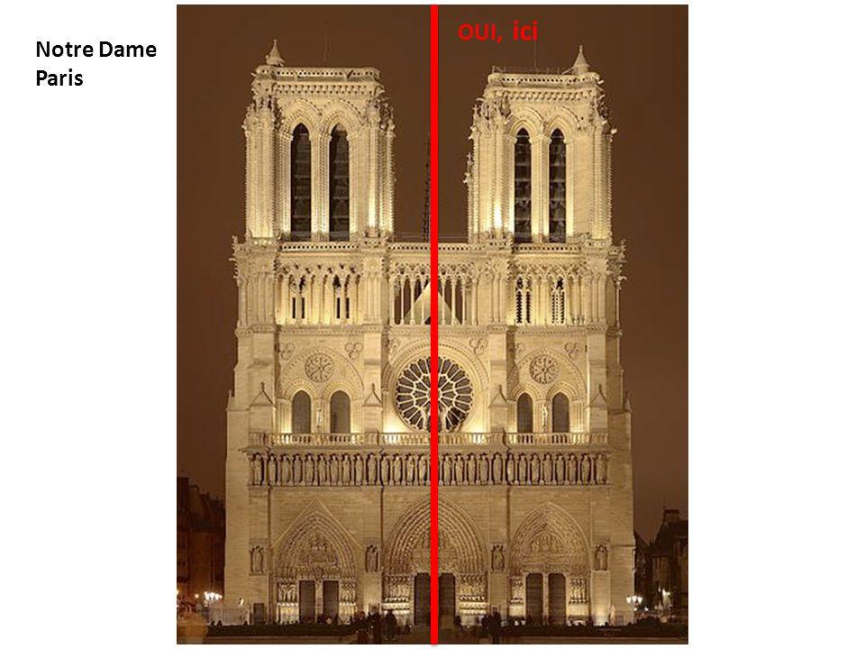 OUI, ici Notre Dame Paris
