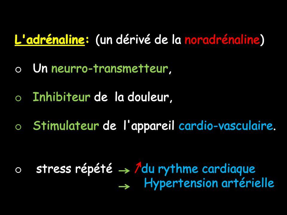 L adrénaline: (un dérivé de la noradrénaline)