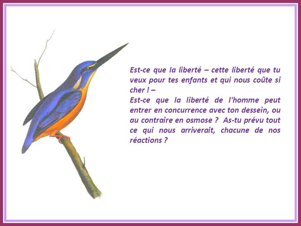 Est-ce que la liberté – cette liberté que tu veux pour tes enfants et qui nous coûte si cher ! –