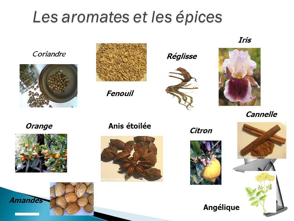 Les aromates et les épices
