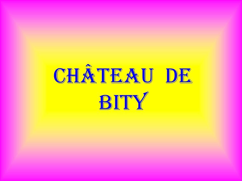 Château de bity