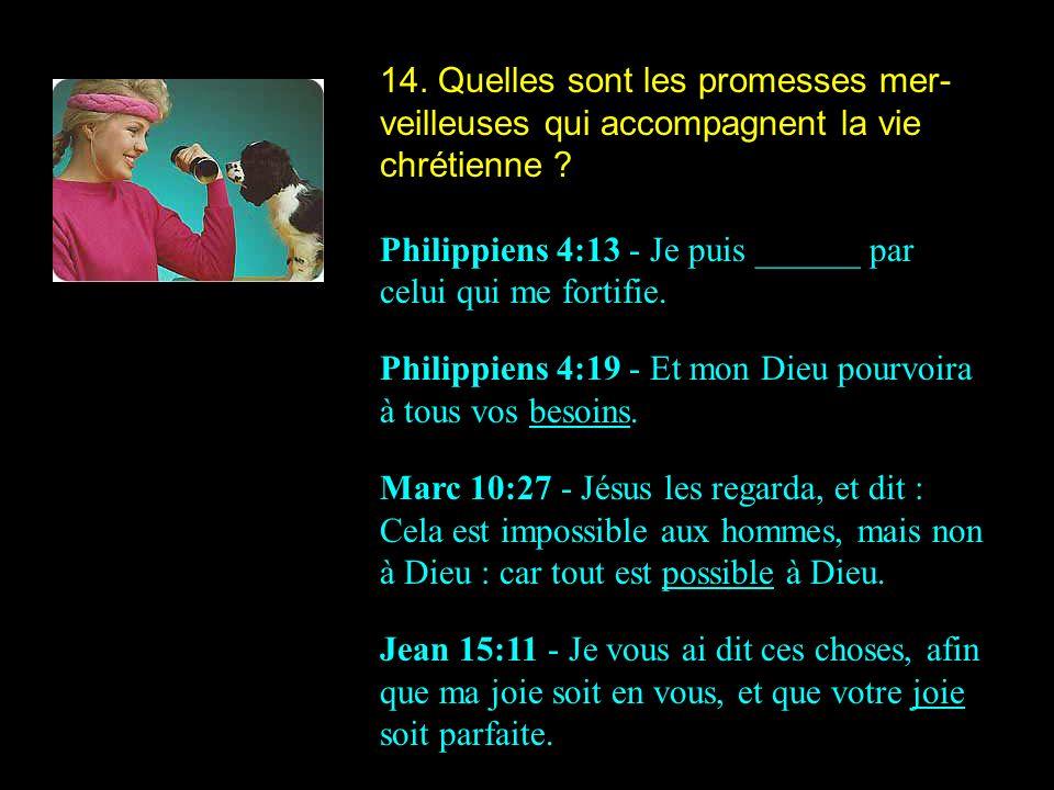 14. Quelles sont les promesses mer-veilleuses qui accompagnent la vie chrétienne