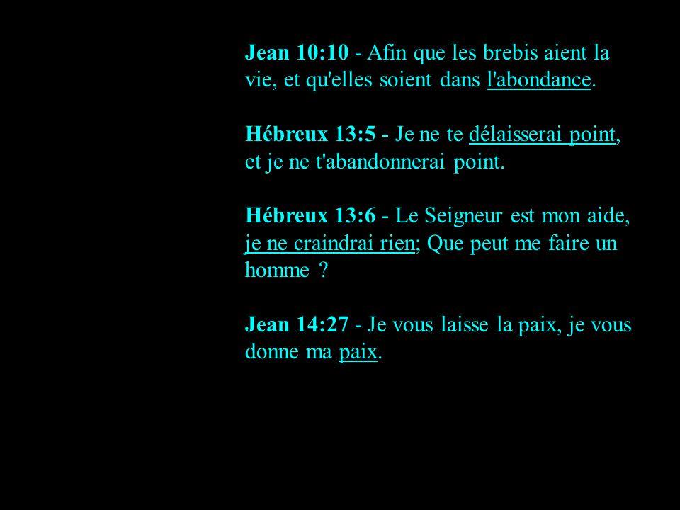 Jean 10:10 - Afin que les brebis aient la vie, et qu elles soient dans l abondance.