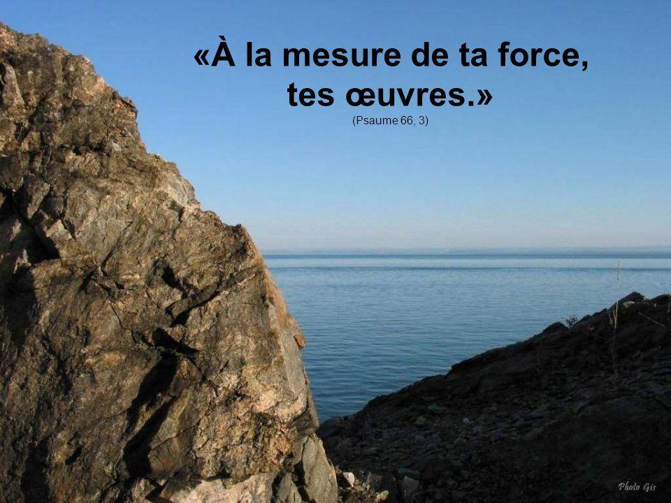«À la mesure de ta force, tes œuvres.» (Psaume 66, 3)