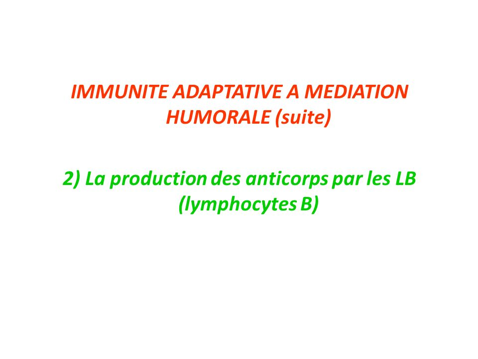 IMMUNITE ADAPTATIVE A MEDIATION HUMORALE (suite)