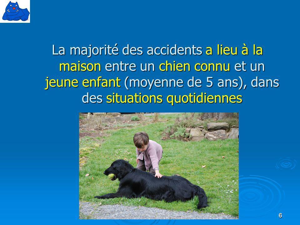 La majorité des accidents a lieu à la maison entre un chien connu et un jeune enfant (moyenne de 5 ans), dans des situations quotidiennes