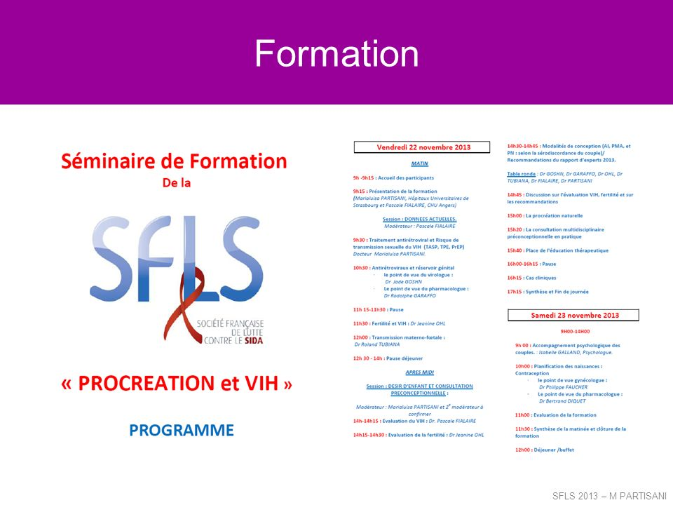 Formation SFLS 2013 – M PARTISANI