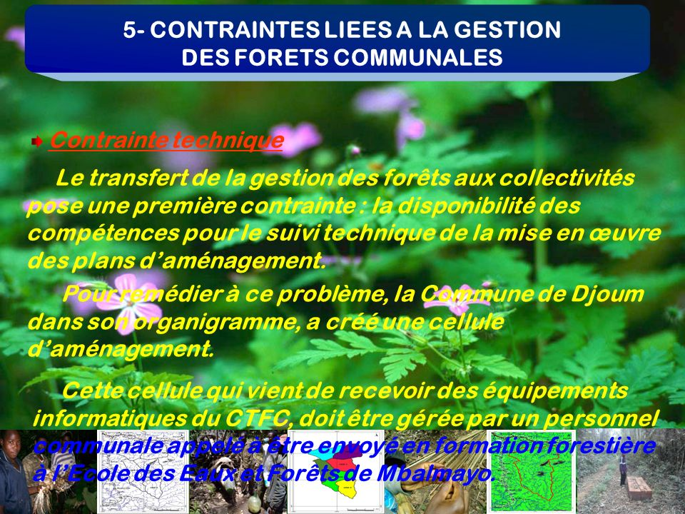 5- CONTRAINTES LIEES A LA GESTION DES FORETS COMMUNALES