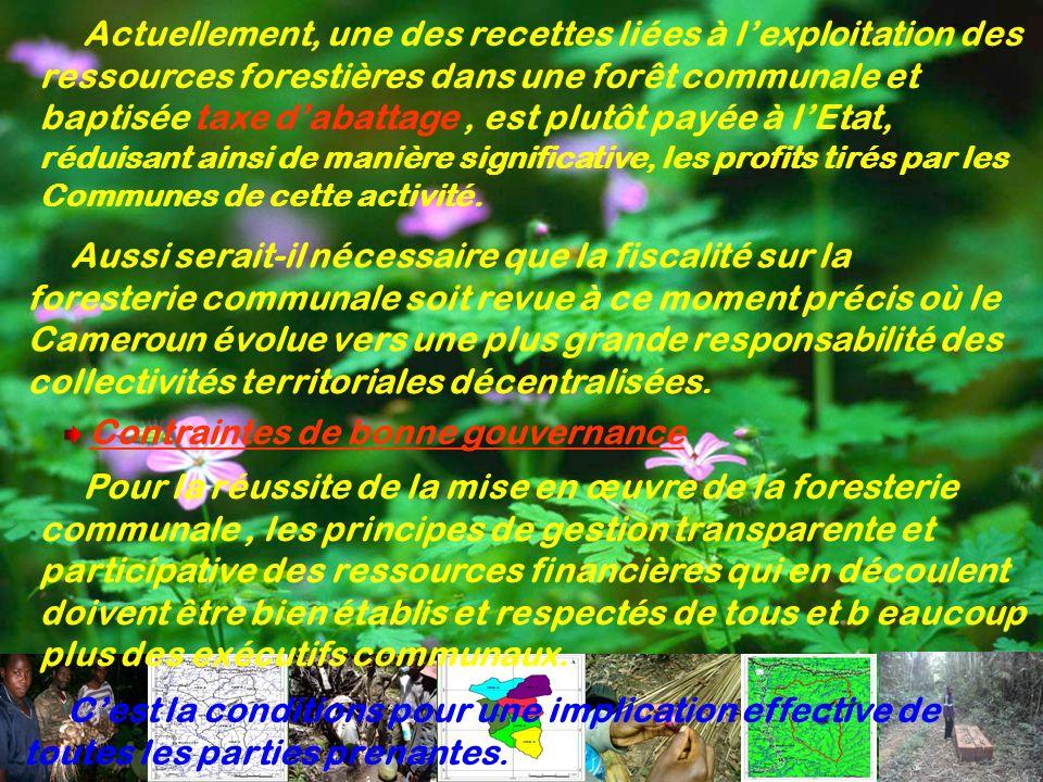Actuellement, une des recettes liées à l'exploitation des ressources forestières dans une forêt communale et baptisée taxe d'abattage , est plutôt payée à l'Etat, réduisant ainsi de manière significative, les profits tirés par les Communes de cette activité.