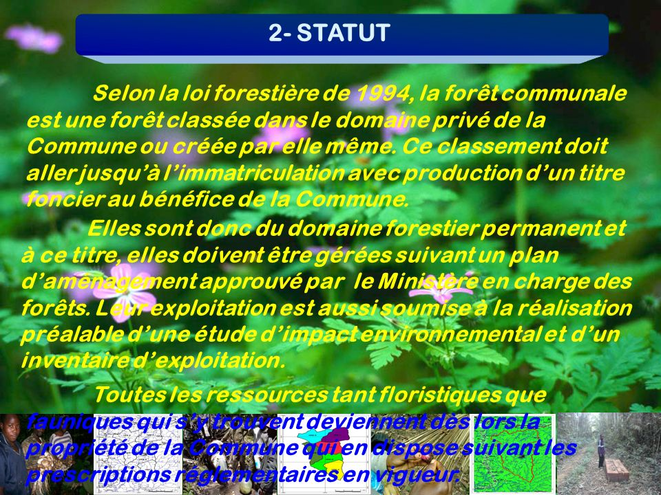 2- STATUT
