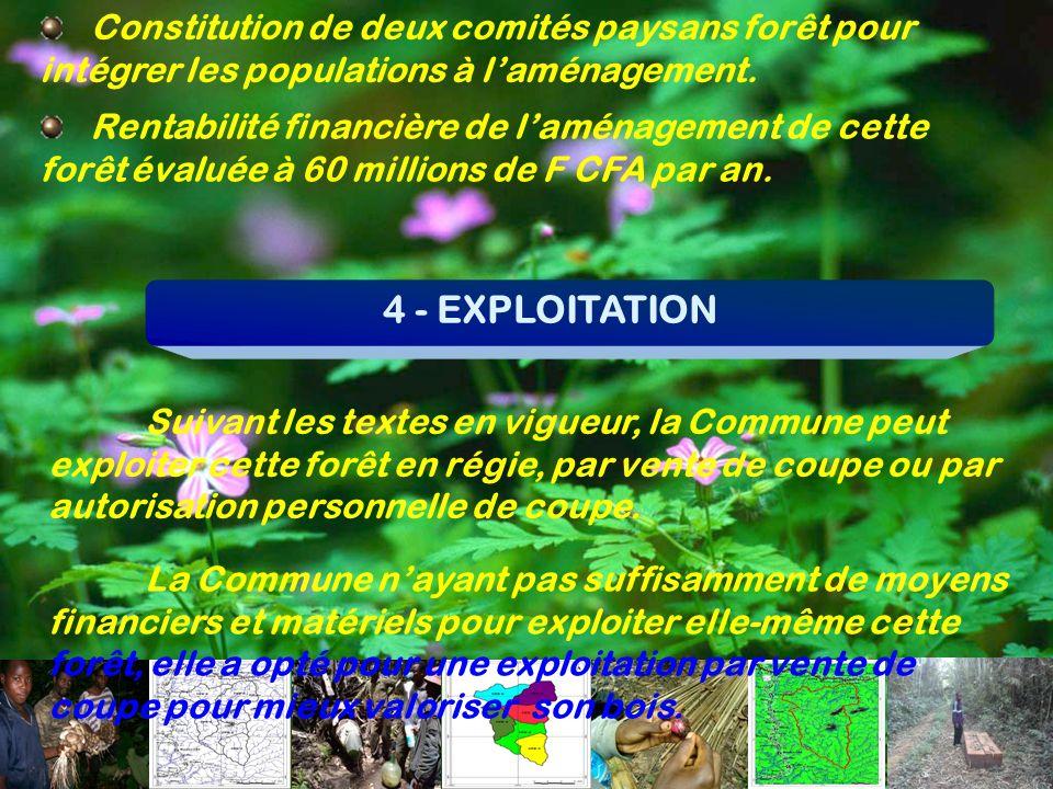 Constitution de deux comités paysans forêt pour intégrer les populations à l'aménagement.