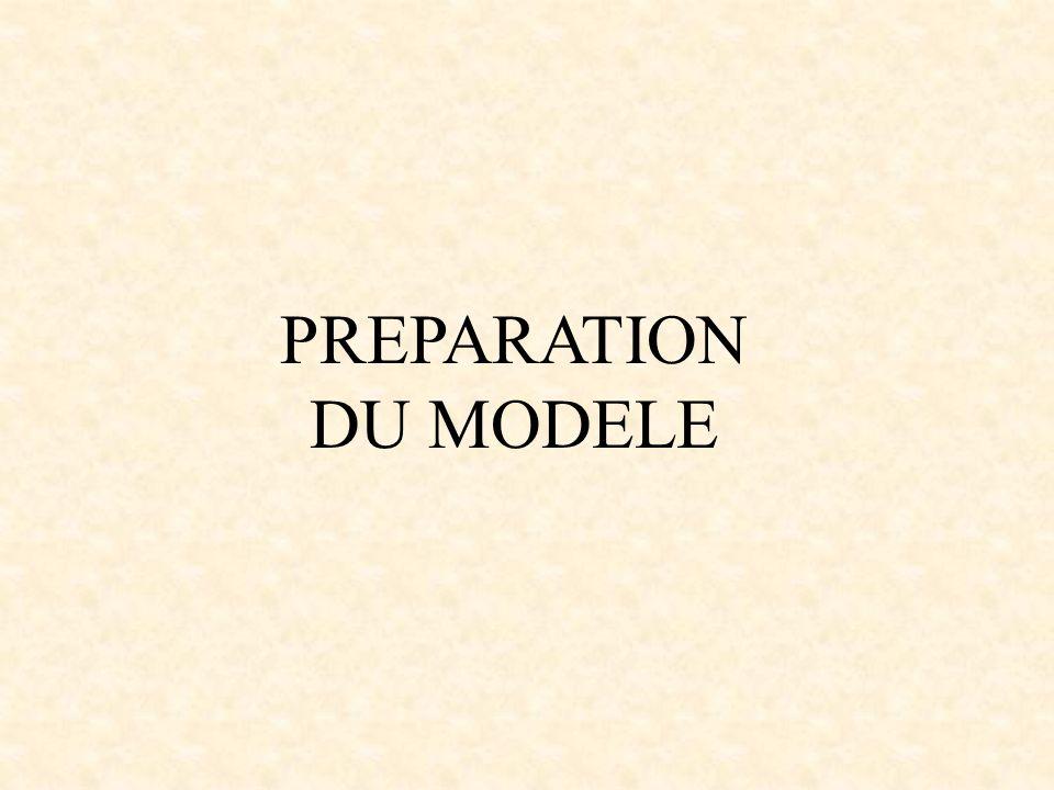 PREPARATION DU MODELE