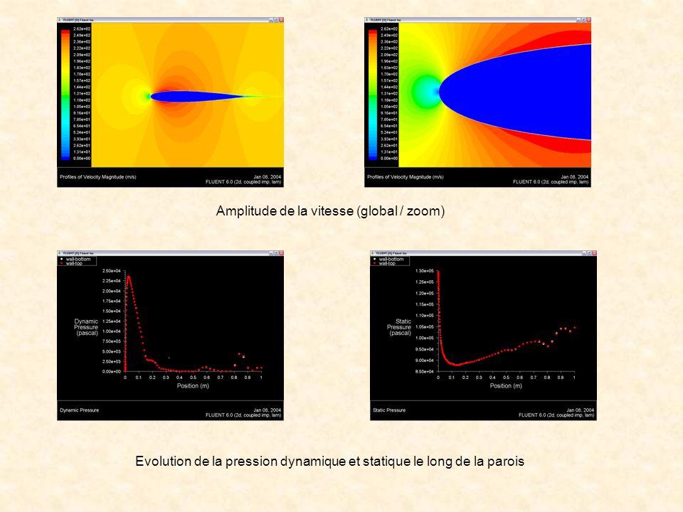 Amplitude de la vitesse (global / zoom)
