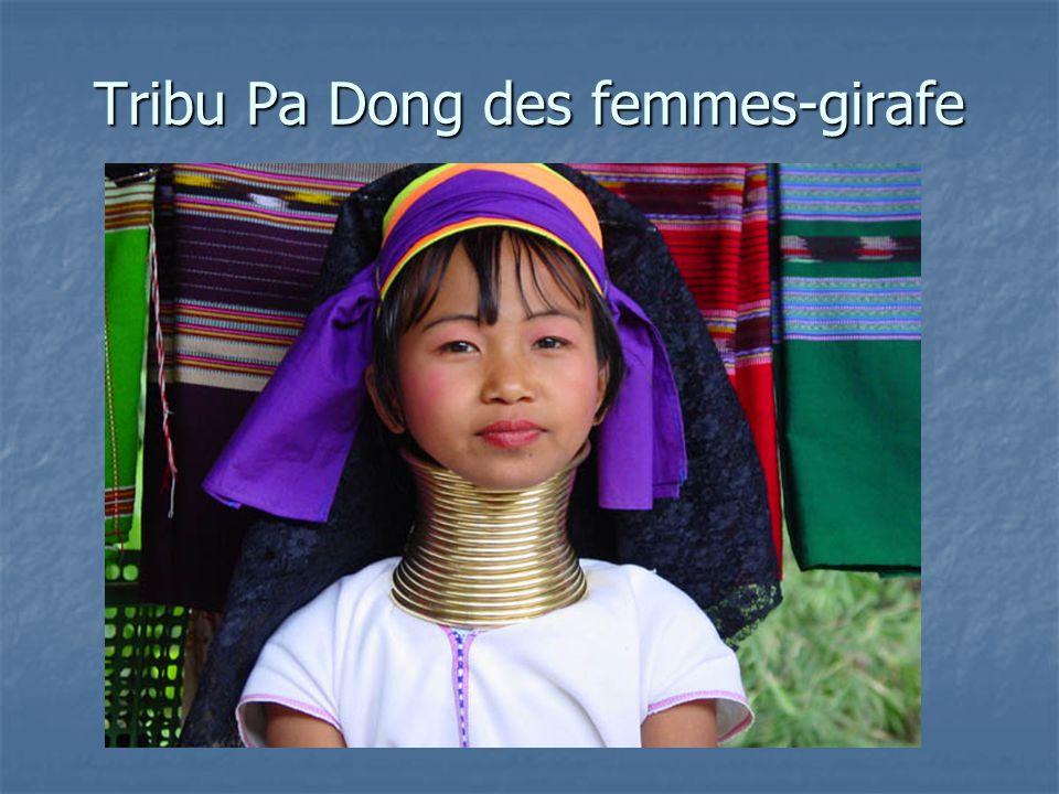 Tribu Pa Dong des femmes-girafe