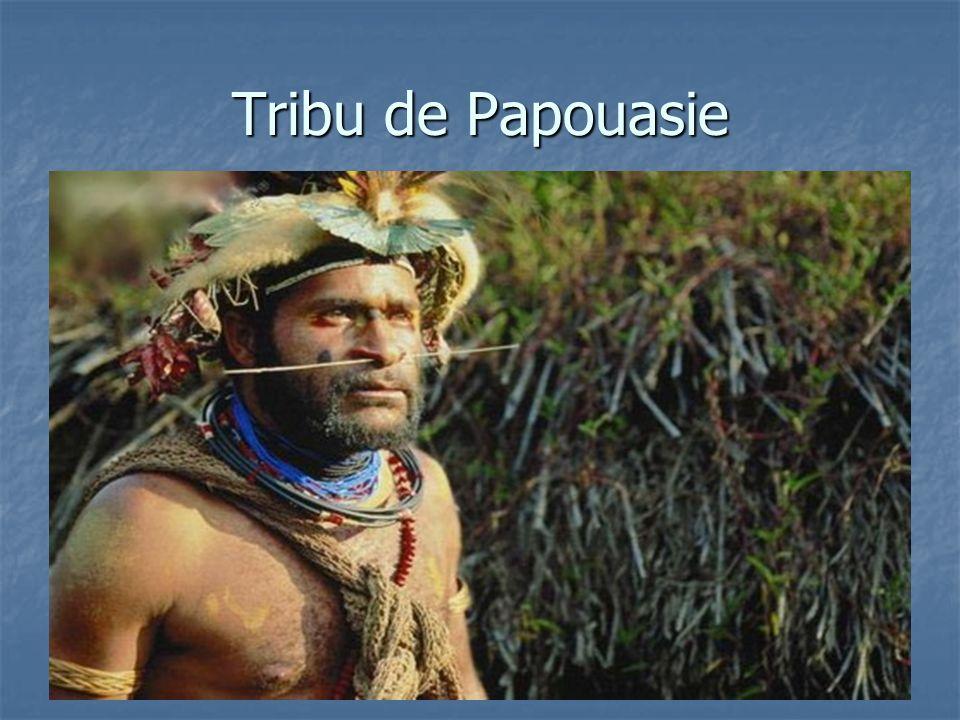Tribu de Papouasie