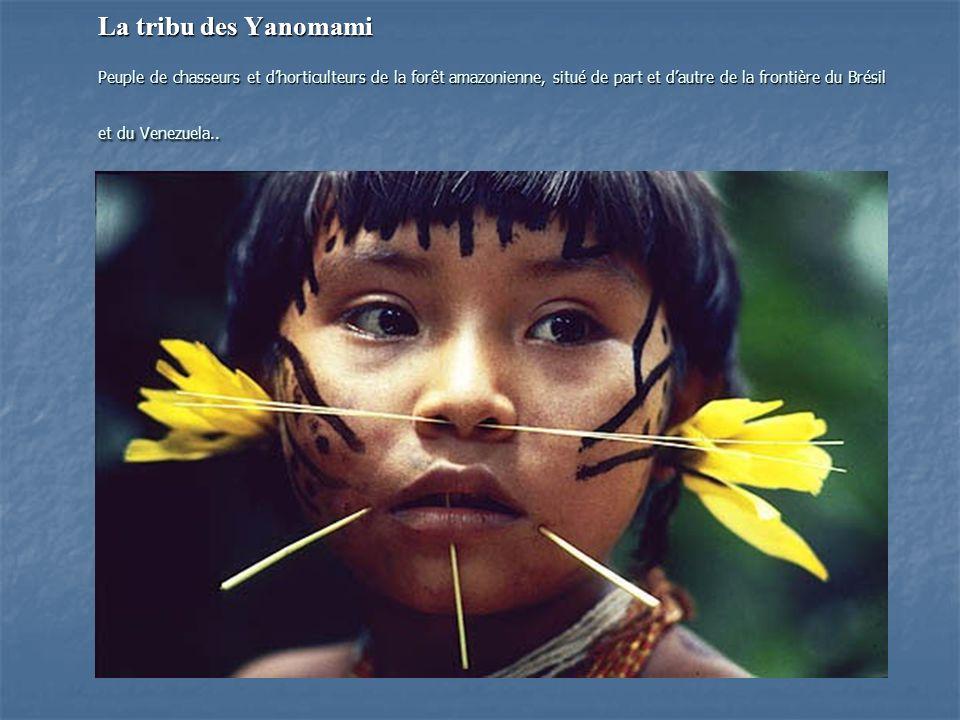 La tribu des Yanomami Peuple de chasseurs et d'horticulteurs de la forêt amazonienne, situé de part et d'autre de la frontière du Brésil et du Venezuela..