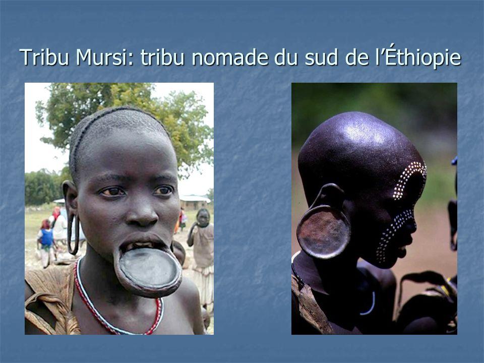 Tribu Mursi: tribu nomade du sud de l'Éthiopie