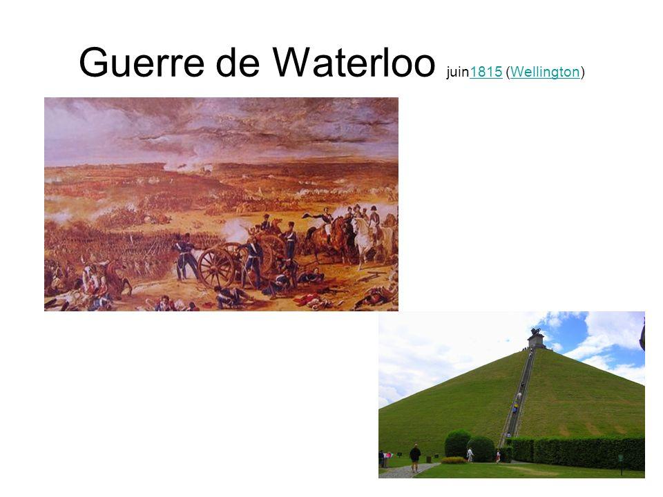Guerre de Waterloo juin1815 (Wellington)