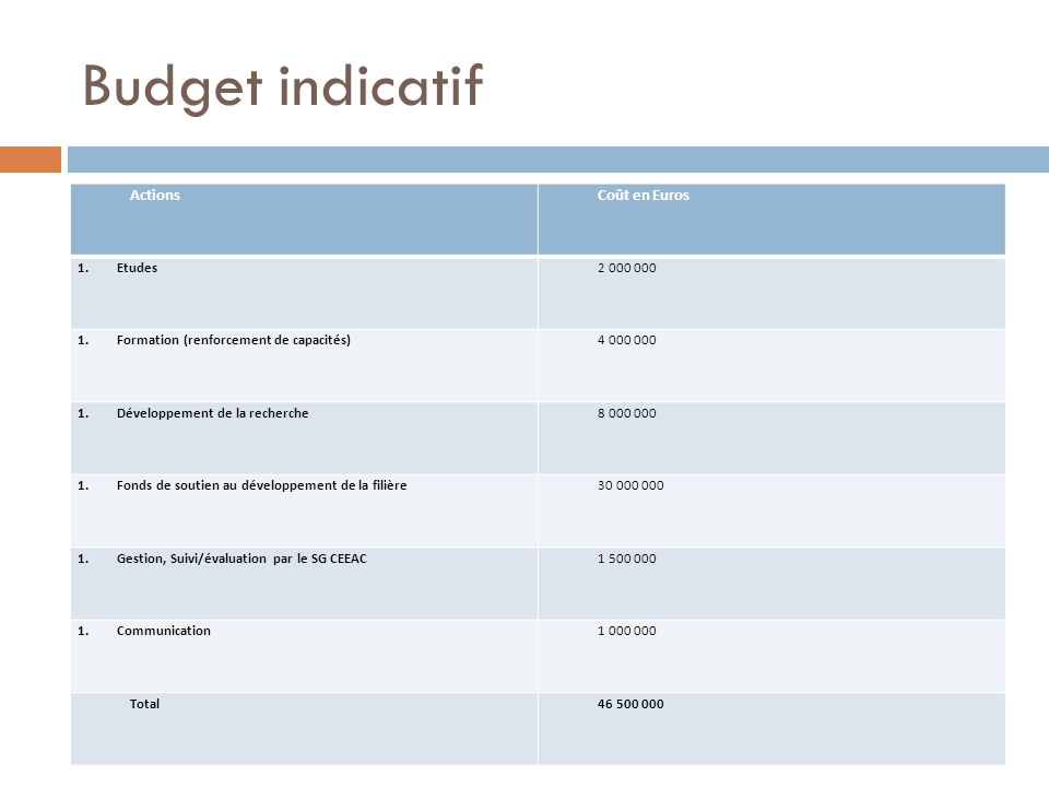 Budget indicatif Actions Coût en Euros Etudes 2 000 000