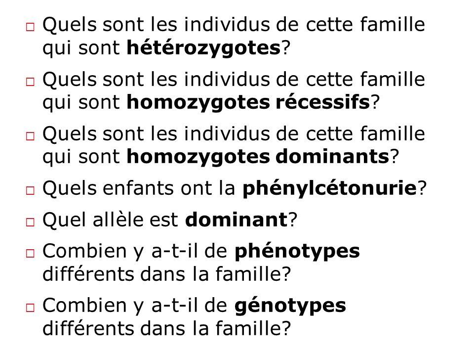 Quels sont les individus de cette famille qui sont hétérozygotes
