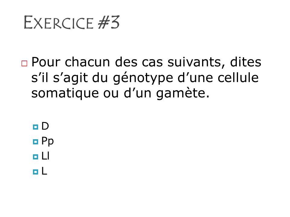 Exercice #3 Pour chacun des cas suivants, dites s'il s'agit du génotype d'une cellule somatique ou d'un gamète.