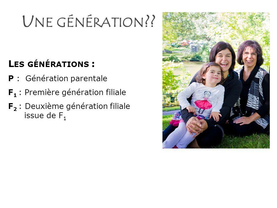 Une génération Les générations : P : Génération parentale