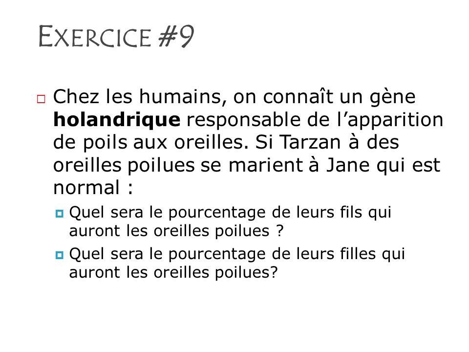 Exercice #9