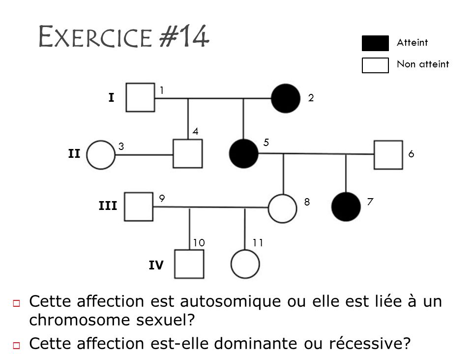 Exercice #14 I. II. III. IV. 1. 2. 3. 4. 5. 6. 7. 8. 9. 10. 11. Atteint. Non atteint.