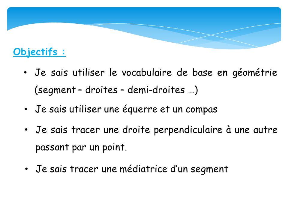 Objectifs : Je sais utiliser le vocabulaire de base en géométrie (segment – droites – demi-droites …)