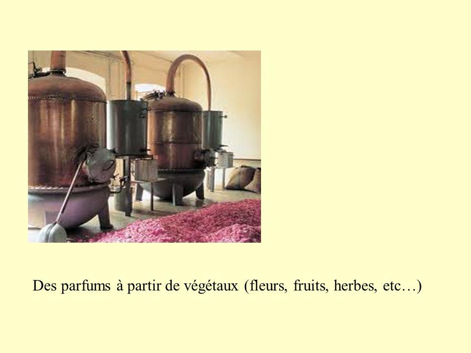 Des parfums à partir de végétaux (fleurs, fruits, herbes, etc…)