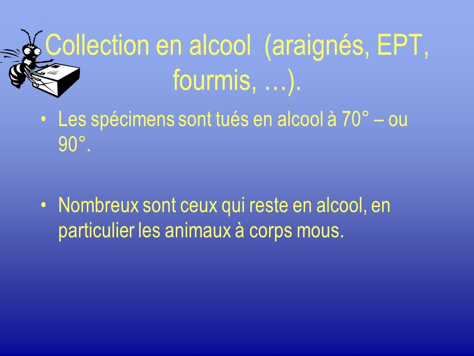 Collection en alcool (araignés, EPT, fourmis, …).