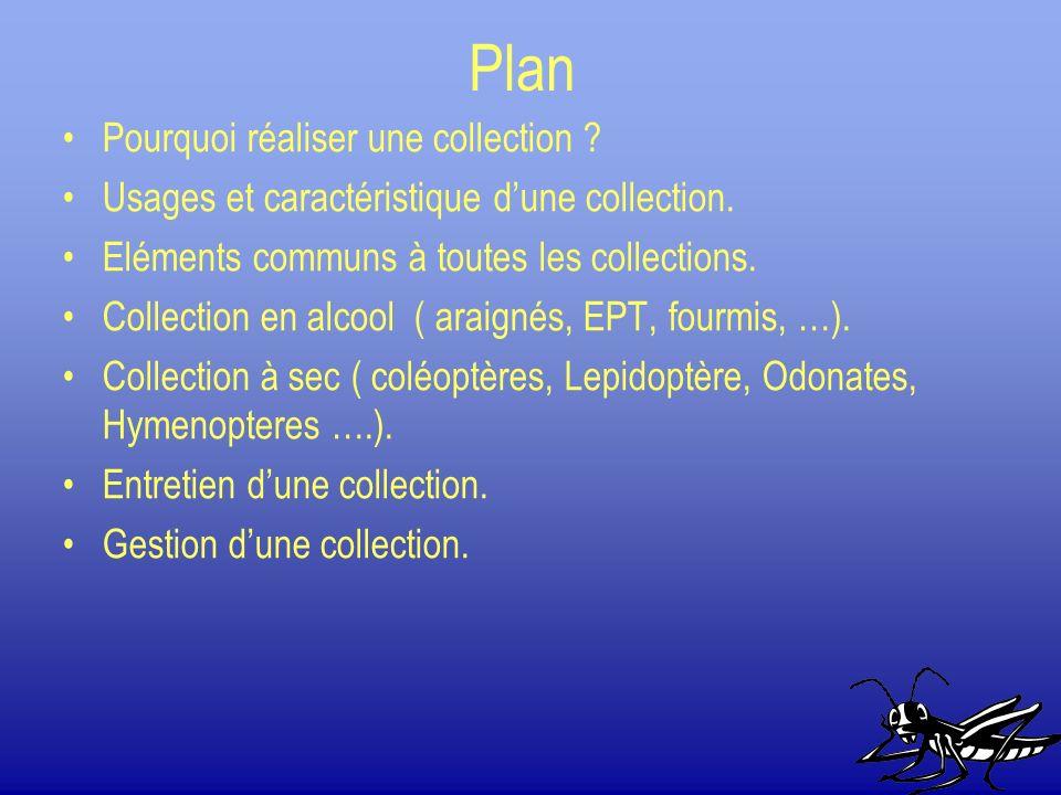 Plan Pourquoi réaliser une collection