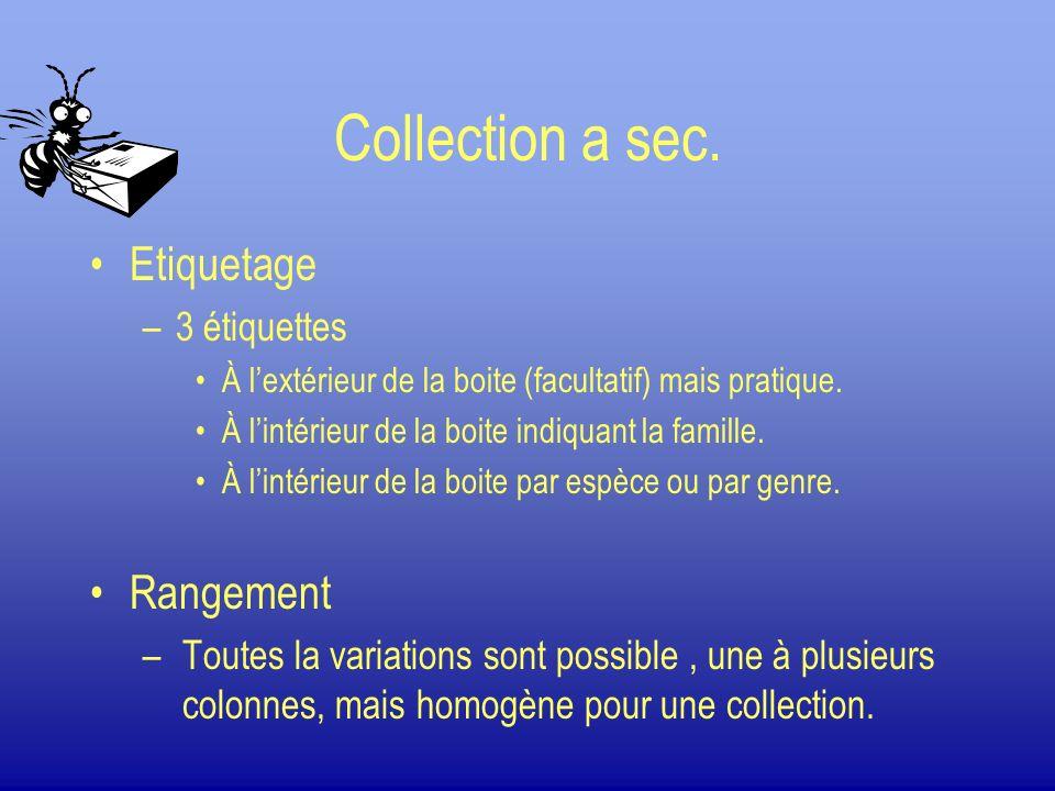 Collection a sec. Etiquetage Rangement 3 étiquettes